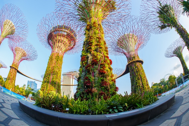 Пейзаж финансового района сингапура и делового здания.
