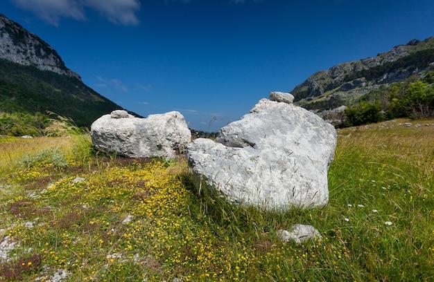 몬테네그로의 산에서 풀밭에 누워 두 개의 큰 바위의 풍경