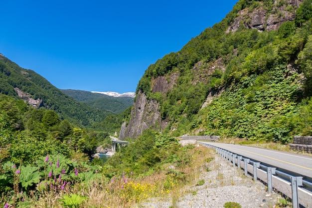 Пейзаж долины с красивым видом на горы, патагония, чили, южная америка