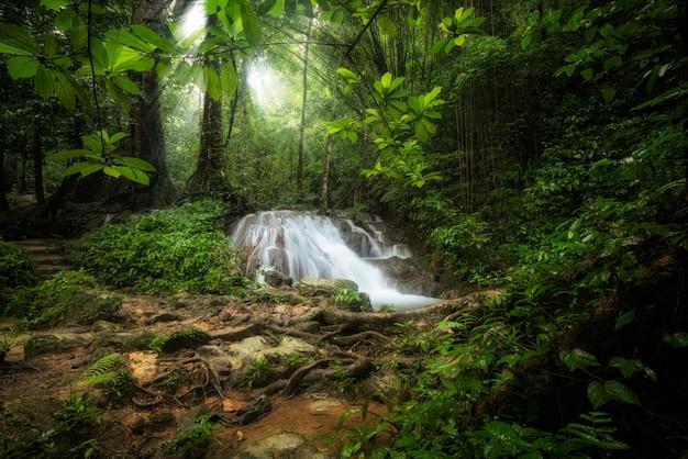 深い熱帯のジャングルの滝の風景