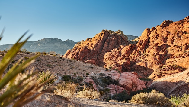 Landscape photo of red rock canyon national park in nevada