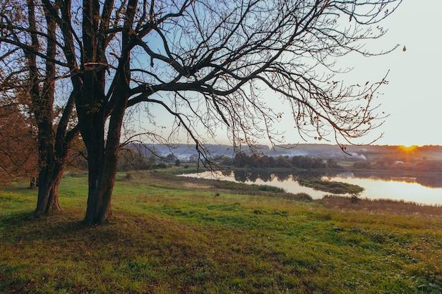 Пейзаж, осень на закате, озеро и красивые ветки деревьев