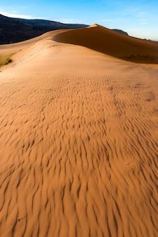 Landscape photography of desert in arizona