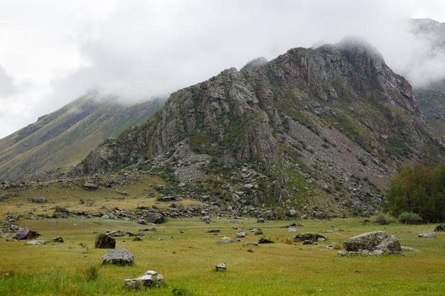 岩と草原に囲まれた朝霧の風景岩