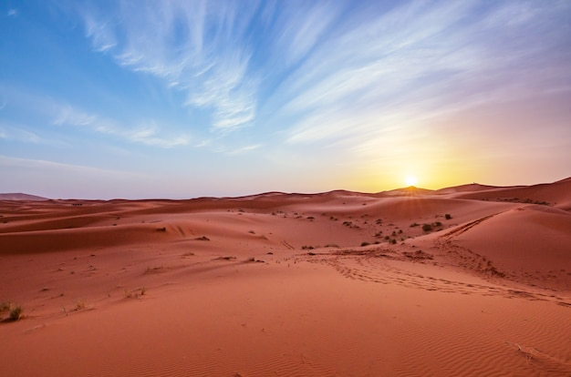 Landscape of sand dunes with animal tracks against a sunset sky