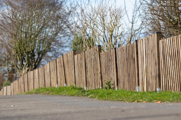 Inquadratura di una staccionata in legno marrone di una mini foresta con un cielo blu chiaro