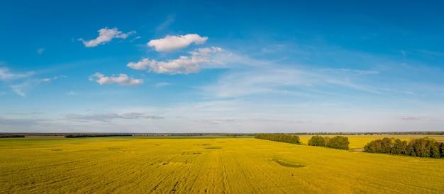 田園地帯に咲く菜種の農地のドローンが撮影した風景