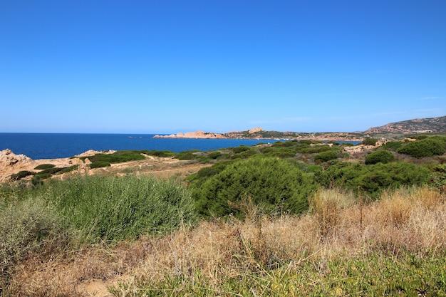澄んだ青い空と海の道の海岸の風景ショット