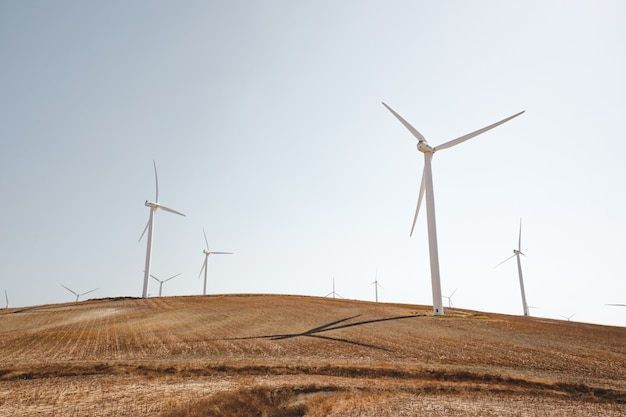 Landscape shot of white wind turbines on a peaceful dry grass field