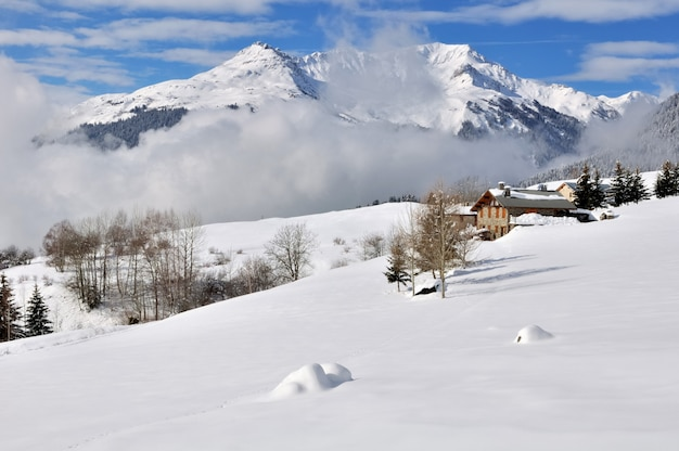 Landscape under the snow