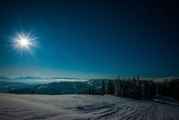 Landscape of snowy ski slope on the backdrop of spruce forest and mountain ranges in the moonlight