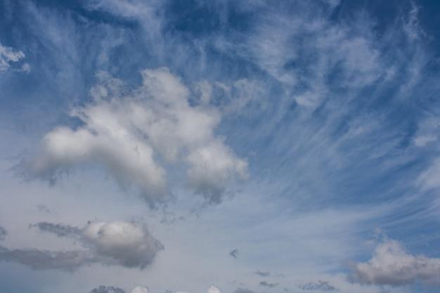 Landscape of summer high blue sky