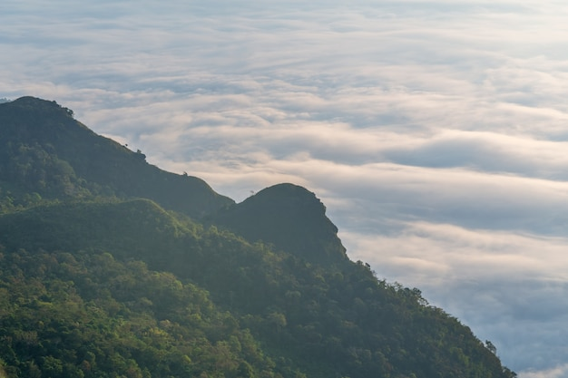 Landscape of sunrise on mountain at phu chi dao ,thailand