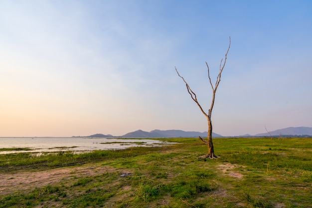 Landscape sunset at bang phra reservoir ,sriracha chon buri,  thailand