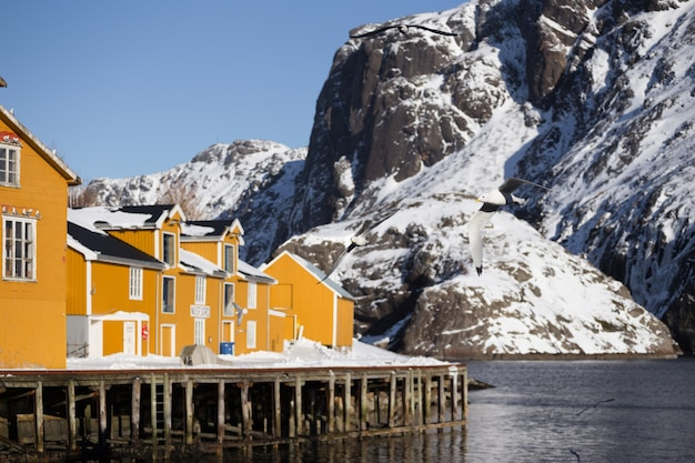 풍경 - 멀리 있는 피요르드와 산 기슭에 서 있는 전통적인 노르웨이 목조 주택 로부. 노르웨이.
