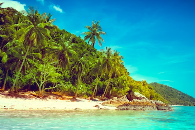 Landscape of tropical island