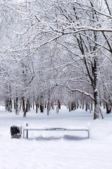 Пейзаж городского центрального парка в первый снежный день зимы