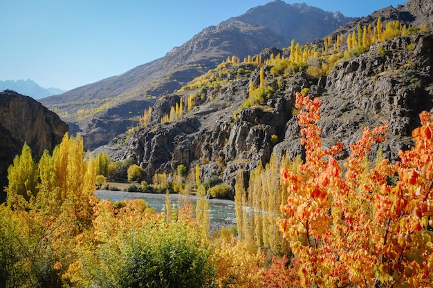 Landscape view of colorful trees in autumn against hindu kush mountain range