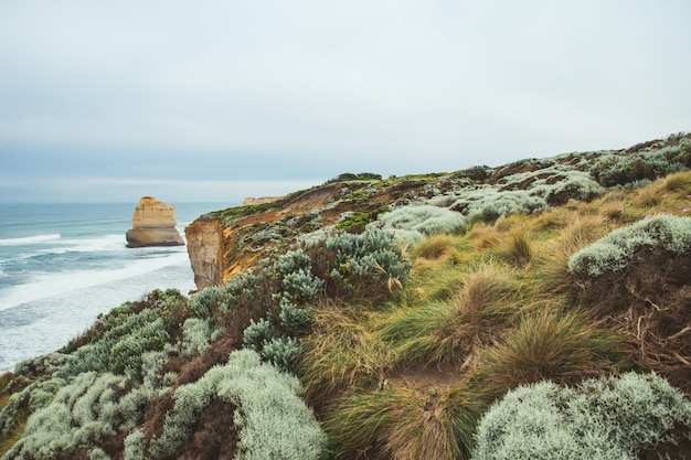 Landscape view of gibson step and meadow at port campbell on the great ocean road