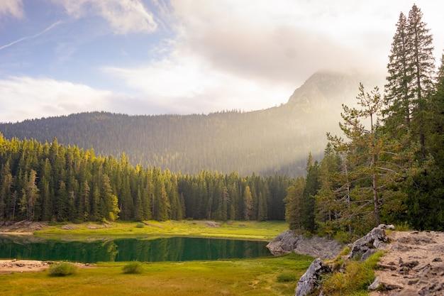 풍경 보기 봄 숲에서 산 보기