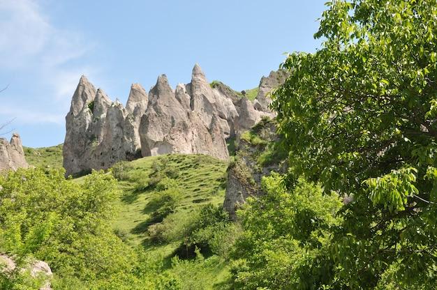 緑の丘の景観