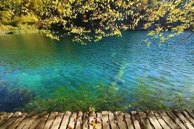 크로아티아의 플리트비체 jezera 국립 공원에서 가을 시즌에 나뭇잎과 호수의 풍경을 볼 수 있습니다.
