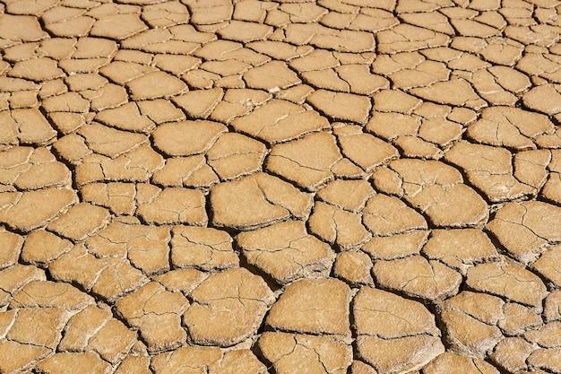 風景-泥割れのある湿った、徐々に乾燥する粘土質土壌