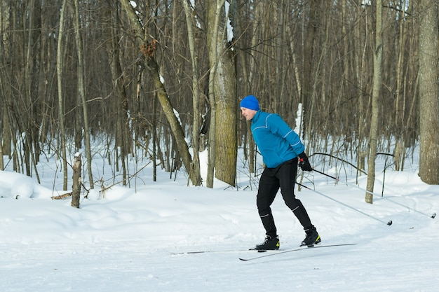 Landscape of the winter forest with a running skier.