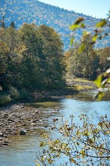 Пейзаж с видом на горную реку, сосны и берег с тонированной краской. осенние карпаты