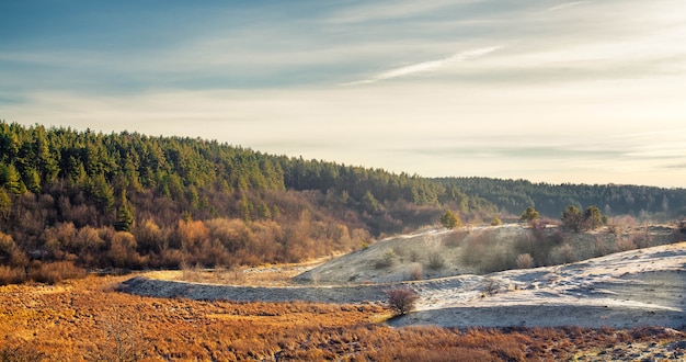 孤独な木と美しい森の雪に覆われた荒れ地の風景