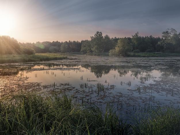 北の沼の上の美しい太陽光線のある風景