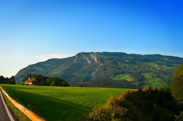 スイスアルプスの大きな緑の山の牧草地のある風景。
