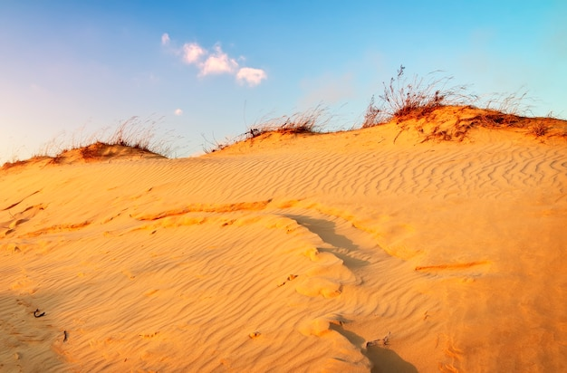 Landscape with blue sky and dunes. sunset on the dunes. beautiful landscape in desert.