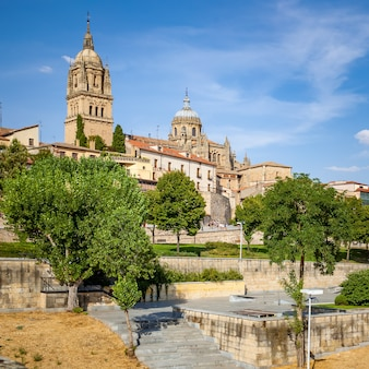 Landscape with city park and cathedral in salamanca,  spain