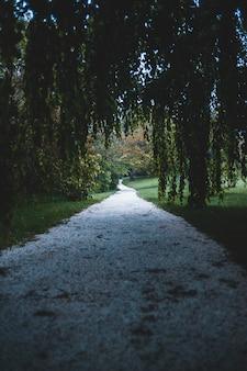 Пейзаж с пустым тротуаром