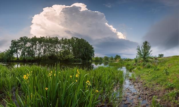강둑에 꽃 풍경