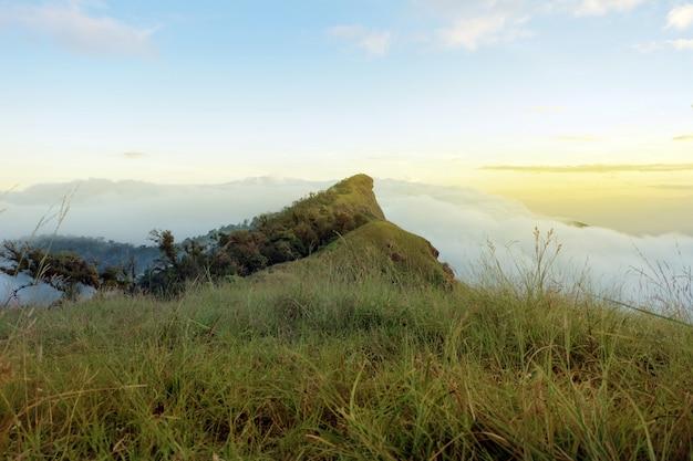 산 꼭대기에 안개 풍경