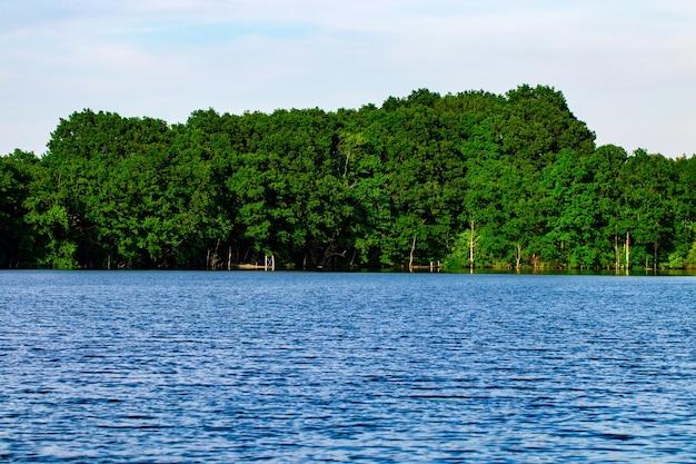 Пейзаж с лесом и рекой впереди. красивый пейзаж.