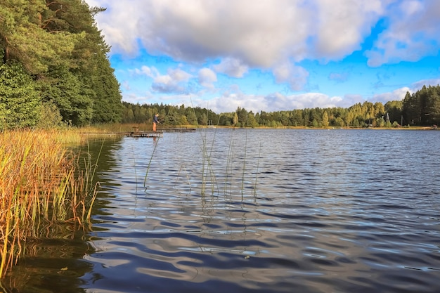Пейзаж с лесом и речным водным путем в перспективе с небом и облаками