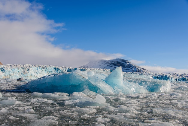 Landscape with glacier in svalbard at summer time. sunny weather.