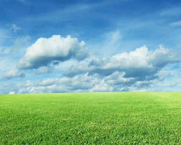 Пейзаж с зеленой травой и голубым небом