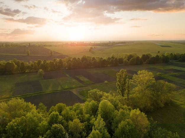 녹색과 검은 색으로 일몰에 숲, 농업 분야 및 흐린 하늘의 녹지 풍경.
