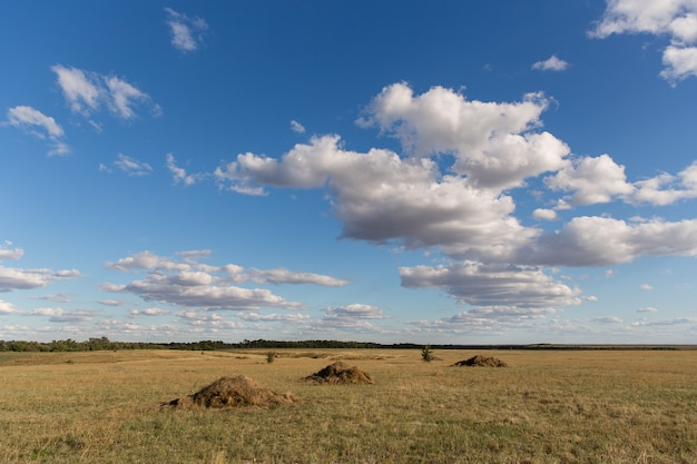 Landscape with hay piles in a field with beautiful clouds