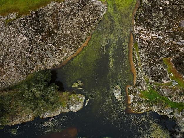 Dehesa de la luz extremadura 스페인의 석호가있는 풍경