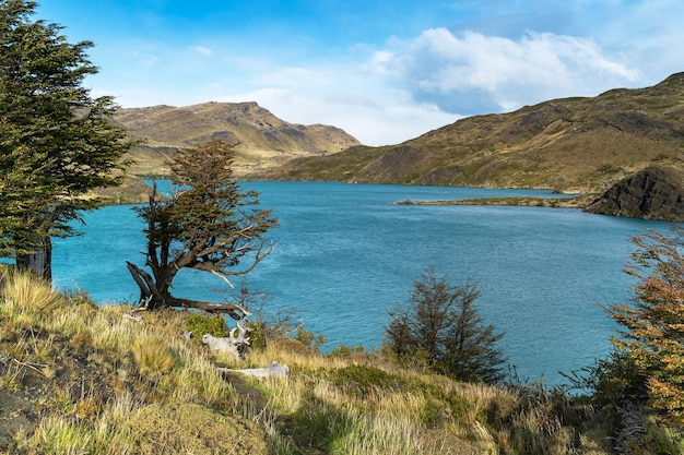 Landscape with lake lago del pehoe in the torres del paine national park, patagonia, chile.