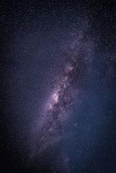 은하수와 풍경. 별과 실루엣 나무와 밤 하늘. 긴 노출 사진.