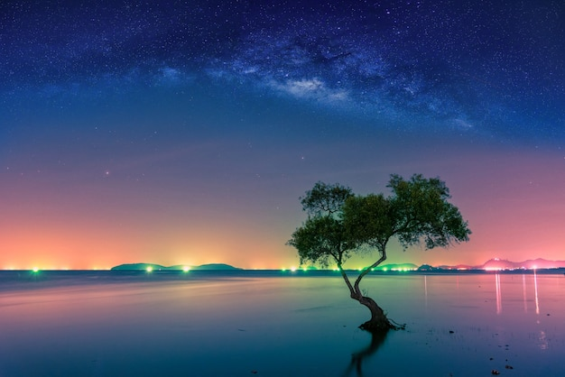 Landscape with milky way galaxy