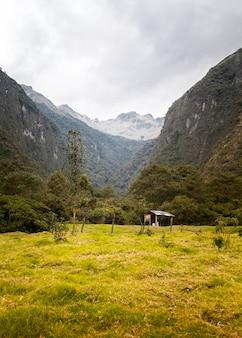 山と牧草地のある風景