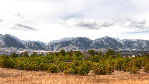 山と木々のある風景