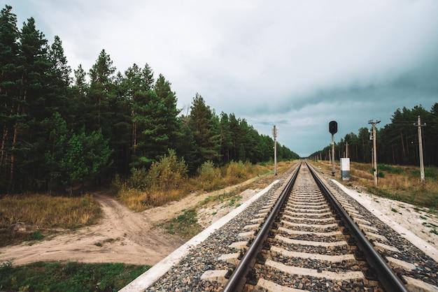 どんよりした天気の森を横切る視点で鉄道のある風景